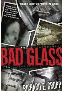 Bad Glass by Richard E. Gropp (book review).