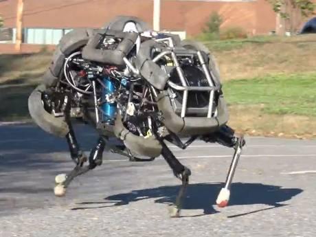 Wild army robot... WildCat.