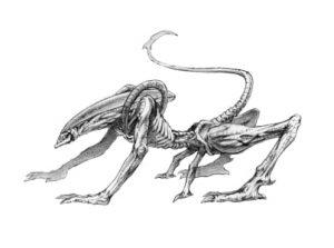 AlienArchive-13