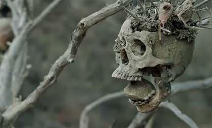 Bone Tomahawk trailer.